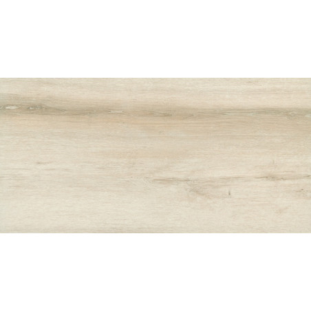 Forest Maple FT 30x60x0,9cm
