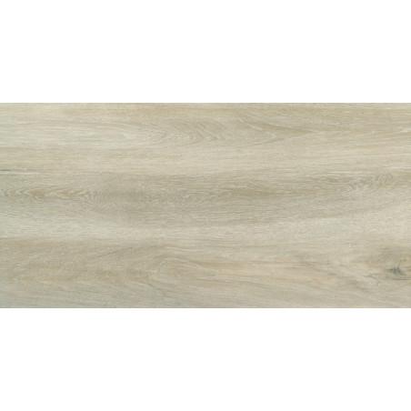 Forest Birch FT 30x60x0,9cm